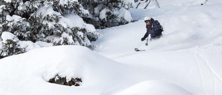 Ski Instructor Training for BASI Level 2 and Level 3 ISIA