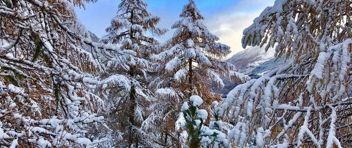 Snow in Verbier – and there's more to come