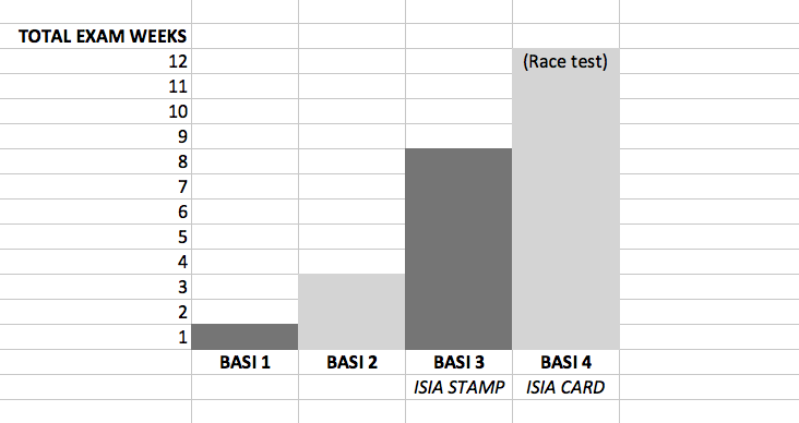 Qualification structure BASI